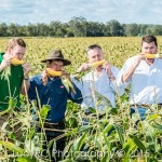 Rugby Farms Gatton Queensland, business marketing and PR photos